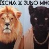 Foto Aischa x Juno Who