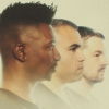 Foto Animals as Leaders
