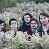 Foto Twin Peaks