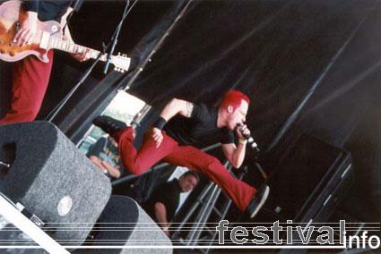 Heideroosjes op Beeckesteinpop 2001 foto