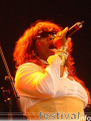 Foto Berget Lewis op Ribs & Blues 2006