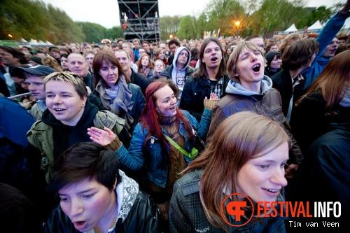 Bevrijdingsfestival Utrecht foto