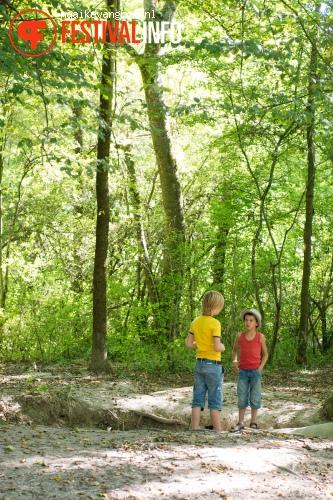 Deep in the Woods 2012 foto