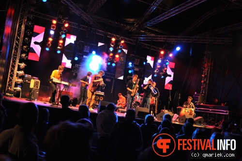 Foto Jungle By Night op Summer Square 2012