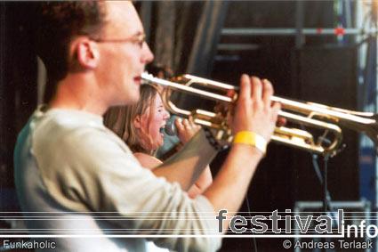 Beeckestijn Pop 2002 foto