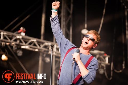 Foto Racoon op Bevrijdingsfestival Overijssel 2013