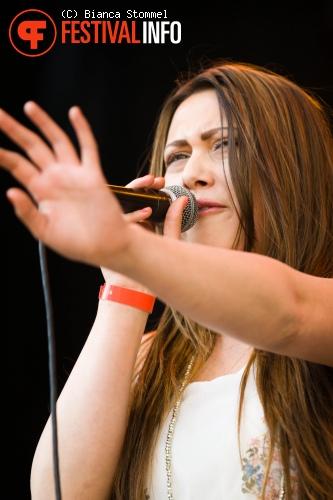 Bevrijdingsfestival Limburg 2013 foto