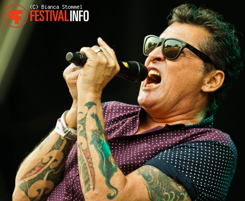 Golden Earring op Bospop 2013 foto