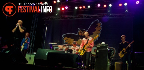 The Fabulous Thunderbirds op Bospop 2013 foto