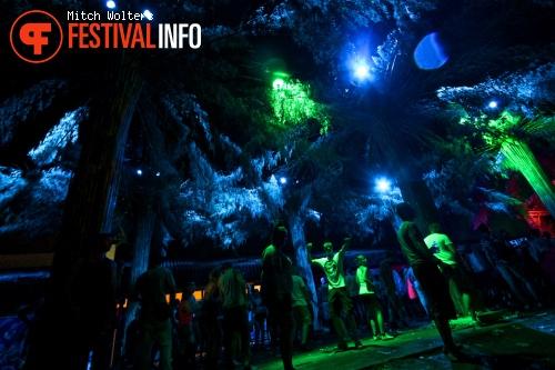 Tomorrowland 2013 foto
