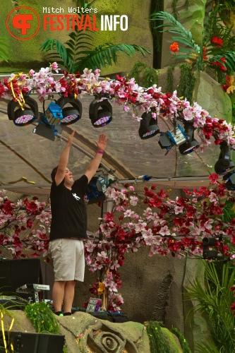 Joachim Garraud op Tomorrowland 2013 foto
