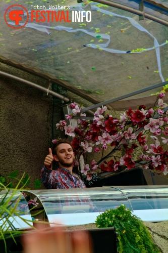 Zedd op Tomorrowland 2013 foto