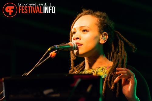 The Skints op Life I Live Festival 2014 foto