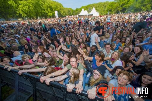 Kensington op Bevrijdingsfestival Utrecht 2014 foto
