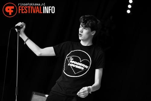 Afterpartees op Bevrijdingsfestival Overijssel 2014 foto