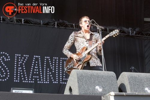 Foto Miles Kane op Best Kept Secret 2014 - dag 2
