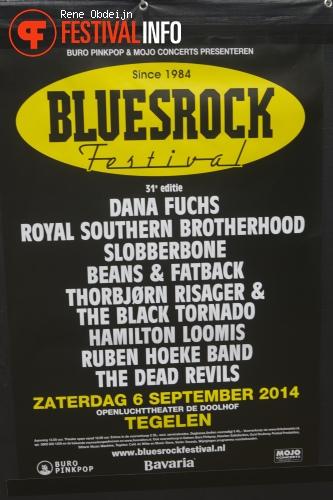 Bluesrock Tegelen 2014 foto