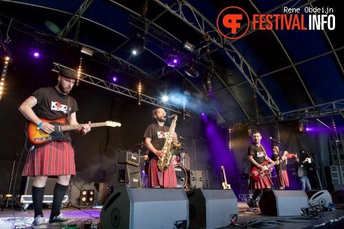 Koza Mostra op Bevrijdingsfestival Overijssel 2015 foto