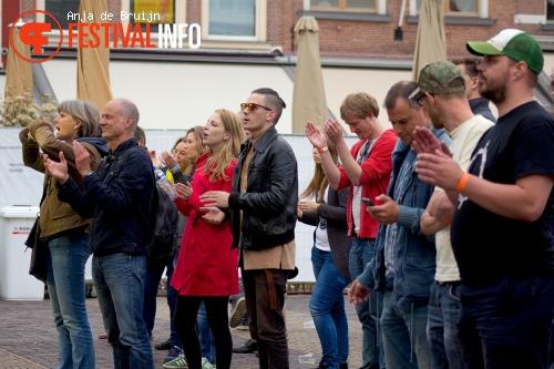 Delft Citypop 2015 foto