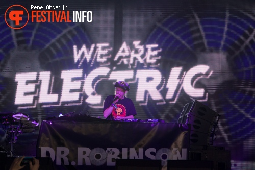 Dr. Robinson op We Are Electric 2015 foto