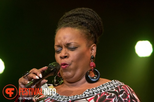 Dianne Reeves op North Sea Jazz 2015 - Zondag foto