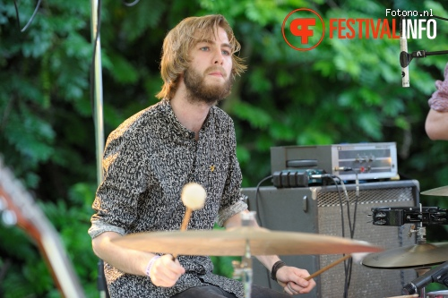 Foto Our Minor Fall op Amsterdam Woods Festival 2015 - zondag
