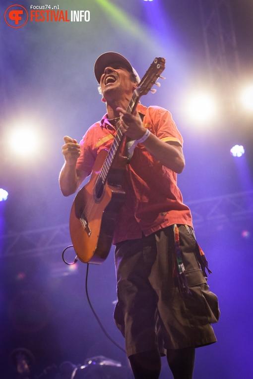 Foto Manu Chao op Bevrijdingsfestival Overijssel 2016
