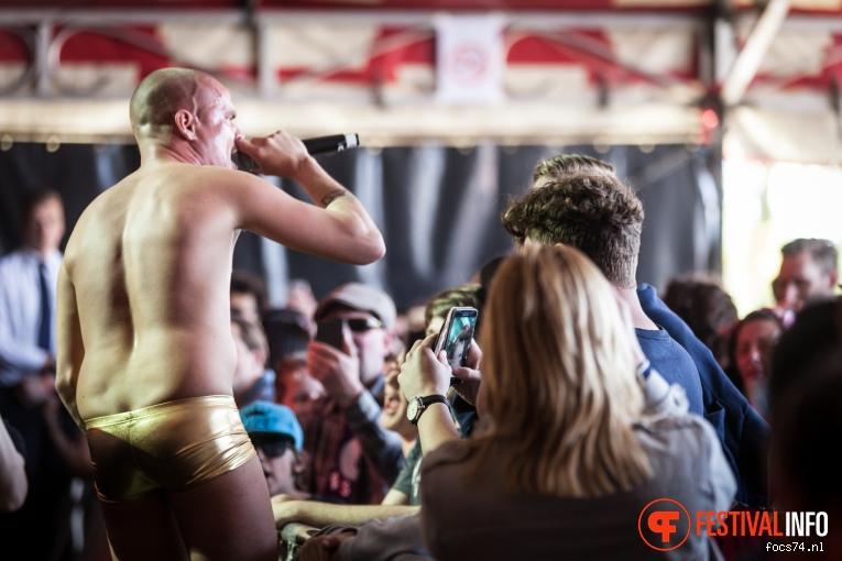 De Likt op Bevrijdingsfestival Overijssel 2016 foto
