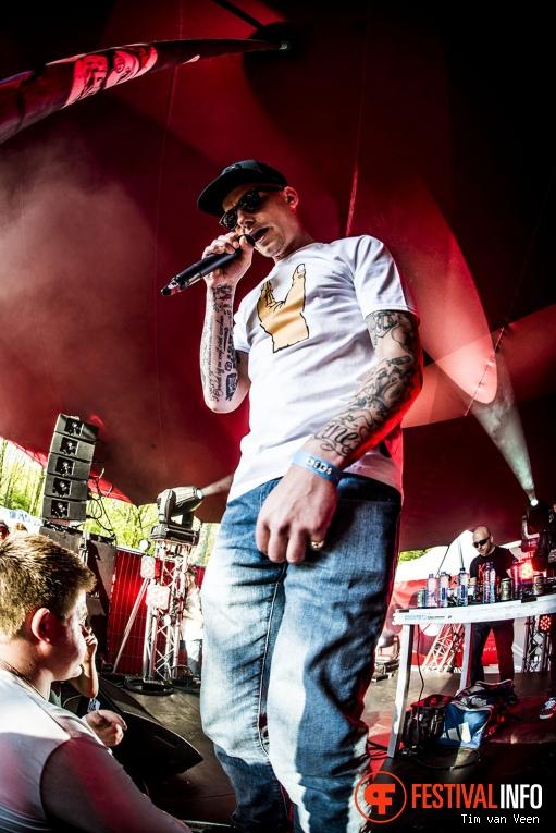 Steen op Bevrijdingsfestival Utrecht 2016 foto