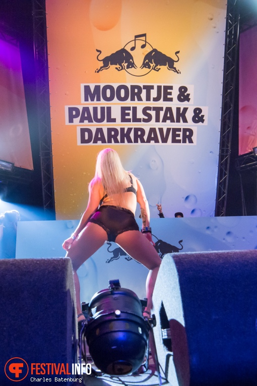 Foto DJ Paul Elstak op Red Bull Culture Clash 2016
