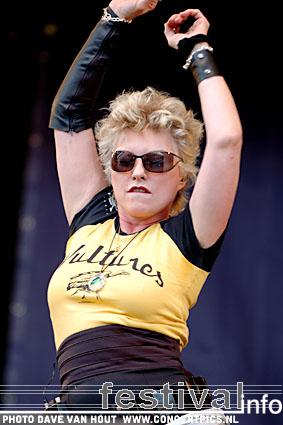 Blondie op Bospop 2007 foto