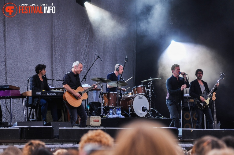 Foto Racoon op Share A Perfect Day 2016