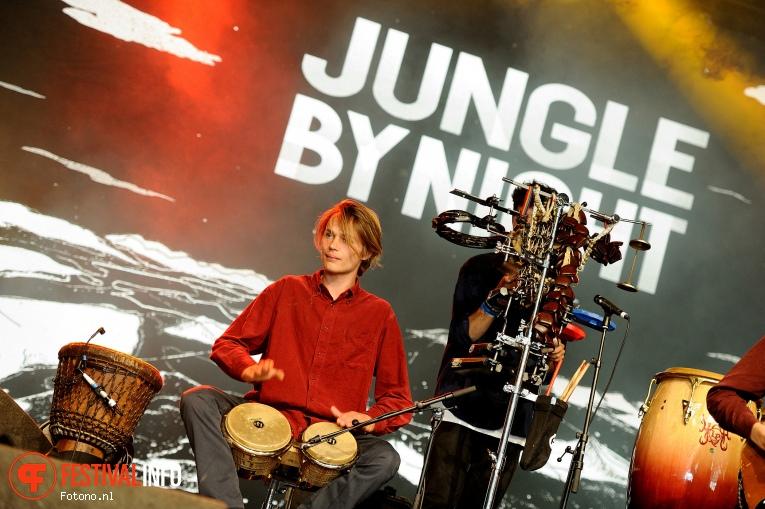 Foto Jungle By Night op PITCH 2016 - Zaterdag