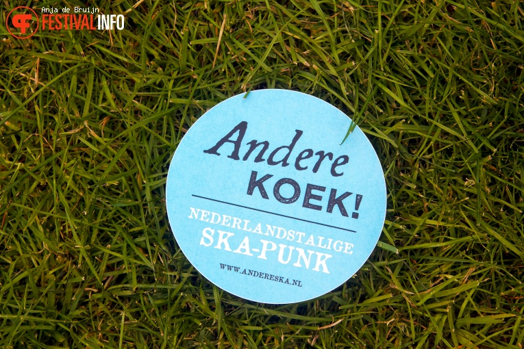 Andere Koek! op Westerpop 2016 foto