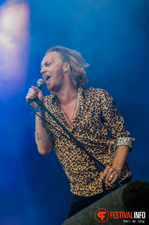 Nod Stewart & The Faces op Night at the Park 2017 foto