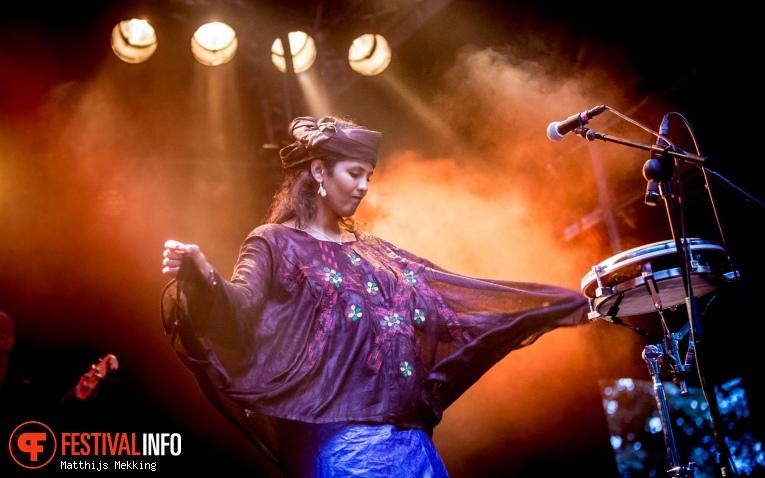 Kel Assouf op Valkhof Festival 2017 foto