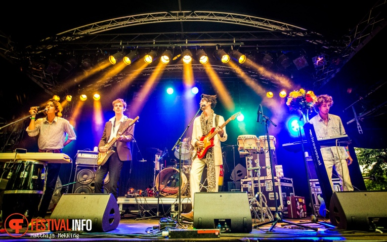 Foto The Mauskovic Dance Band op Valkhof Festival 2017