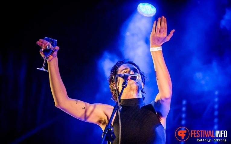 The Moonlandingz op Valkhof Festival 2017 foto