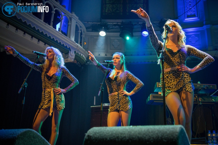 Foto Kid Creole & The Coconuts op Kid Creole and the Coconuts - 11/10 - Paradiso