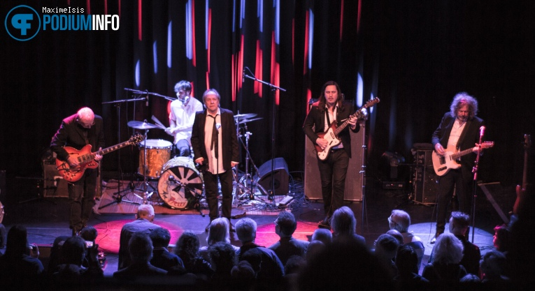 Foto The Pretty Things op The Pretty Things - 13/04 - Paard