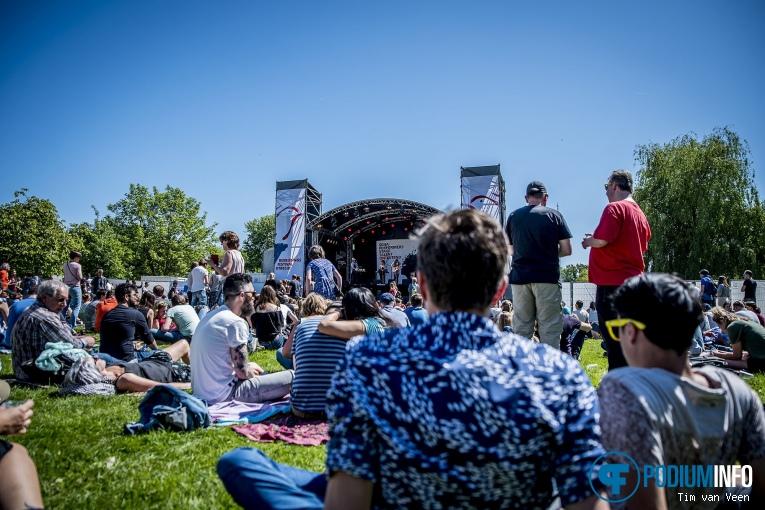 Luwten op Bevrijdingsfestival Utrecht 2018 foto
