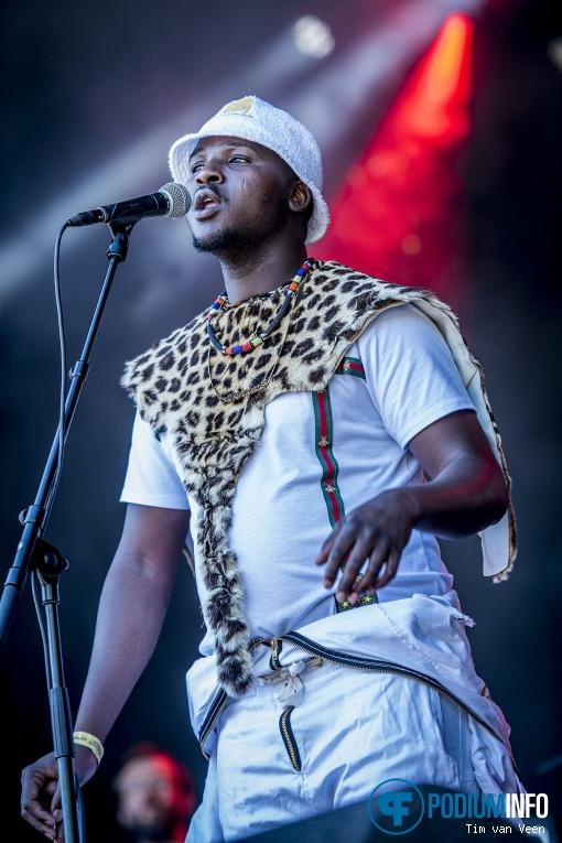 Soweto Soul op Bevrijdingsfestival Utrecht 2018 foto