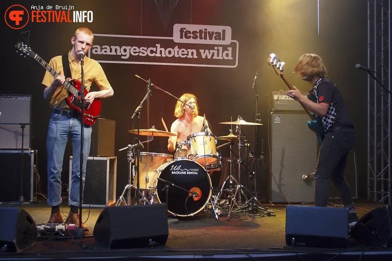Festival Aangeschoten Wild 2018 foto