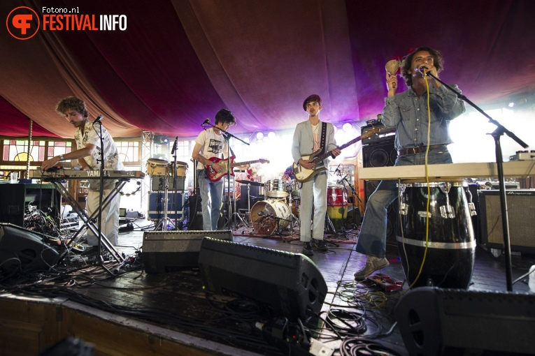 The Mauskovic Dance Band op Welcome To The Village 2018 - zondag foto
