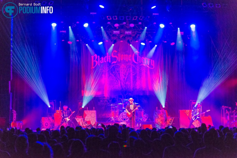 Foto Black Stone Cherry op Black Stone Cherry - 10/11 - 013
