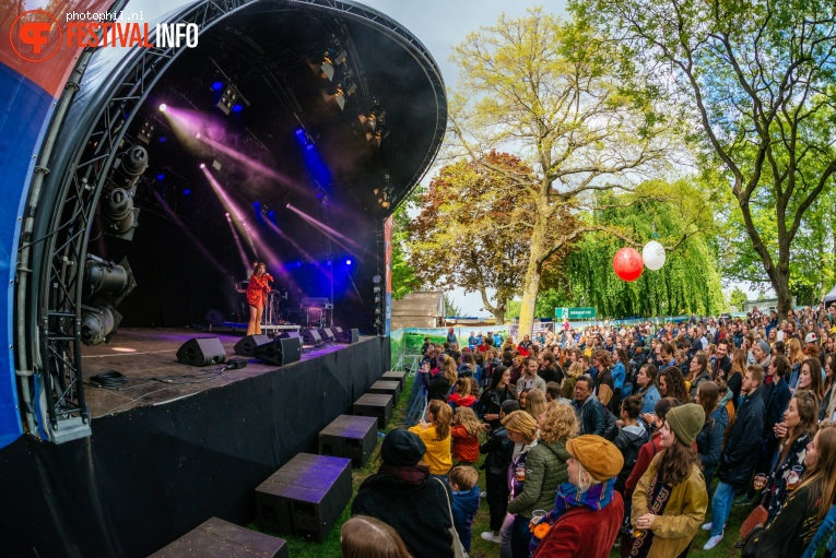 Foto Merol op Bevrijdingsfestival Nijmegen 2019