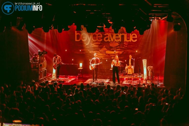 Boyce Avenue op Boyce Avenue - 10/05 - Melkweg foto
