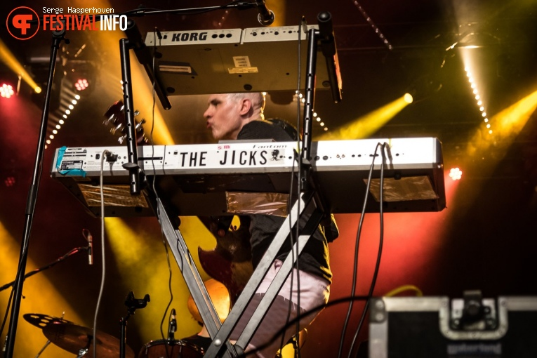 Stephen Malkmus and The Jicks op Best Kept Secret 2019 - zondag 2 juni foto