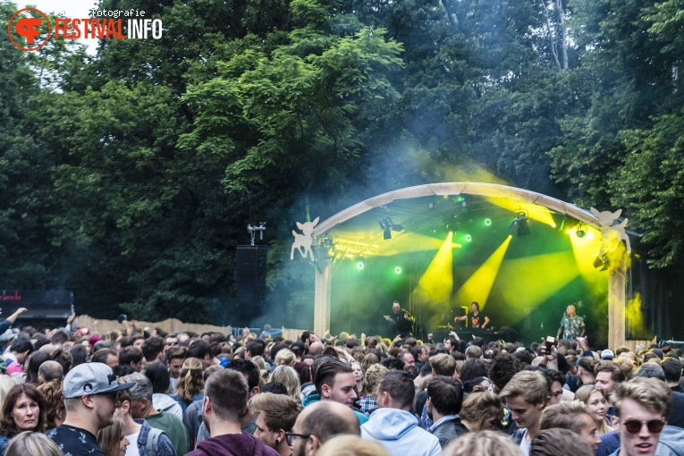 Lifecycle op Werfpop 2019 foto