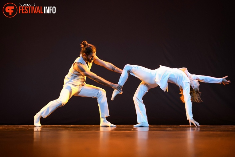 Scapino Ballet Rotterdam op Lowlands 2019 - Zondag foto